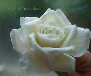 Avalanche Rose  - Cake by Calli Creations