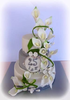 Silver wedding cake. - Cake by Pelegrina