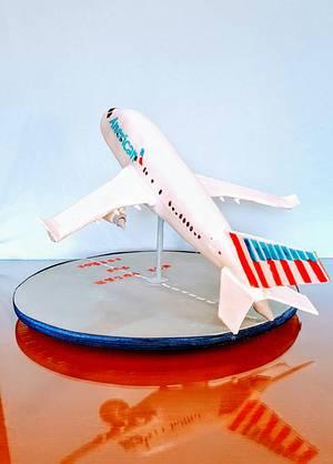 Airplane  cake  - Cake by claudiamarcel