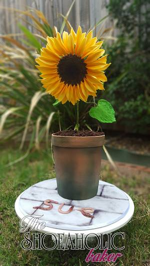 You are my sunshine, my lovely sunshine! - Cake by The Shoeaholic Baker