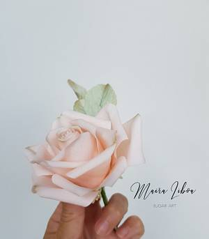 Peach rose - Cake by Maira Liboa