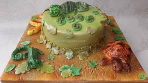 Animal Magic Cake - Cake by Deb