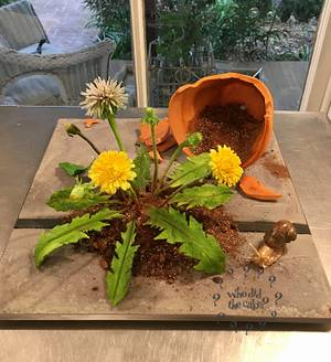 Dandelions - Cake by Who did the cake (Helen Wilkinson)