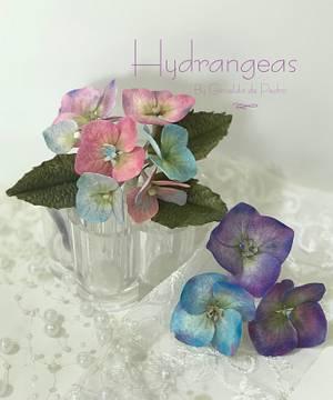 Hydrangeas  - Cake by Griselda de Pedro