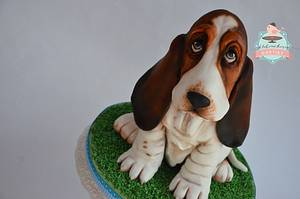 basset hound puppy - Cake by pavlo