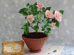 Rose plant Cake - Cake by Prachi Dhabaldeb
