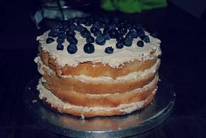 Blueberry Sponge Cake - Cake by Adrianna
