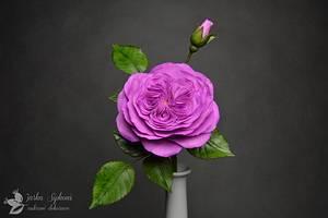 Austin Rose - Cake by JarkaSipkova