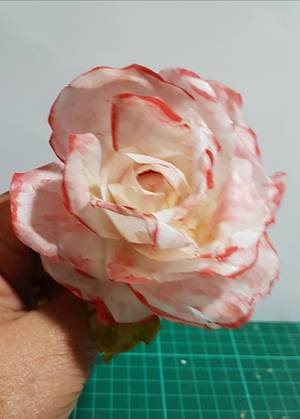 Rosa  - Cake by Ofelia Bulay
