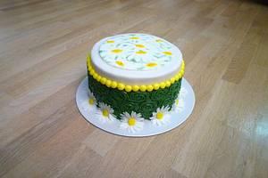 Daisy inspiration  - Cake by Janka