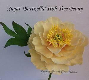 Sugar Bartzella Itoh Tree Peony  - Cake by Anne Cutajar-Wagner