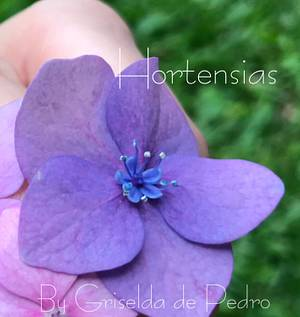 Hortensias de Azúcar  - Cake by Griselda de Pedro