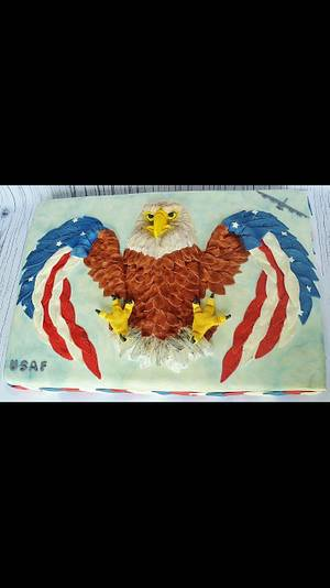 Air Force Sheet Cake - Cake by Suzie Wilcox