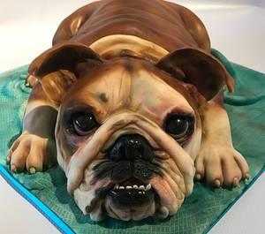 British Bulldog Cake - Cake by Louise at Cake Oddity