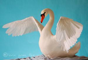 Lifesize Swan - Away With the Fairies - Cake by Lovin' From The Oven