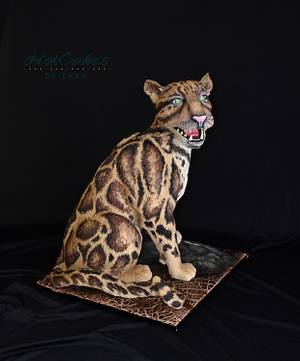 Clouded Leopard- Cake this again Collab  - Cake by HotCakes by Tara