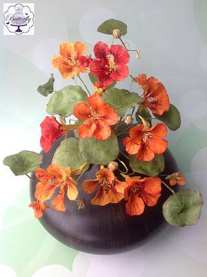 Tribute to People Living with Cancer Collaboration - Nasturtiums - Cake by Butterfly Cakes and Bakes