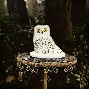 Snow owl  - Cake by Teresa Frye