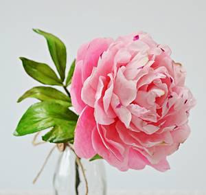 Freeformed Sugar  Pink Peony- garden beauty - Cake by Catalina Anghel azúcar'arte