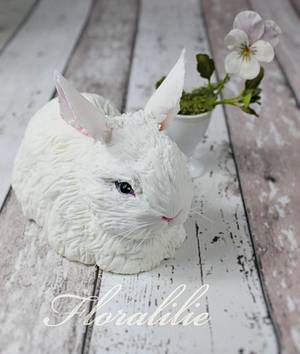 White Rabbit - Cake by Floralilie