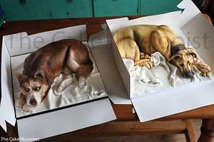 cake dogs in cake boxes - Cake by Hannah