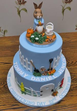 Peter Rabbit Christening Cake - Cake by Lorraine Yarnold