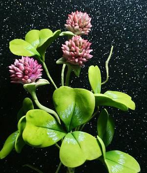 Free formed flowers- Clover - Cake by Catalina Anghel azúcar'arte