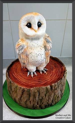Owl Cake - Cake by Mother and Me Creative Cakes