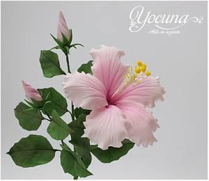 Hibiscus Rosa Sinensis en pasta de goma - Hibiscus Rosa Sinensis Gumpaste. - Cake by Yolanda Cueto - Yocuna Floral Artist