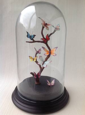 Butterfly Curiosities - Cake by Butterfly Cakes and Bakes