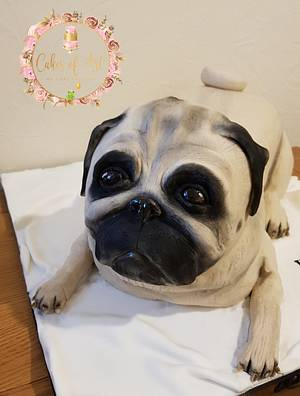 Pug cake - Cake by Cakes of Art by Vicky