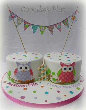 Birthday cakes for twins! - Cake by Janice Baybutt