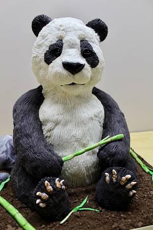NCACS 2018- Panda - Cake by Kim