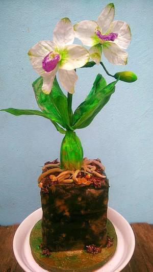 Orchid Pot Cake  - Cake by Daniel Guiriba