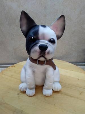 Bulldog - Cake by Marianna Jozefikova