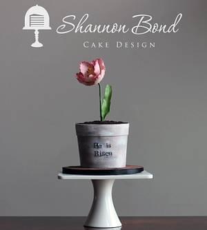 Easter Tulip Cake - Cake by Shannon Bond Cake Design