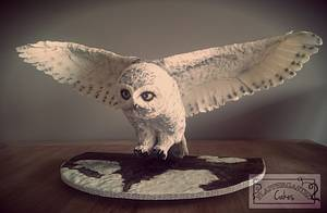 Landing owl  - Cake by Flappergasted Cakes