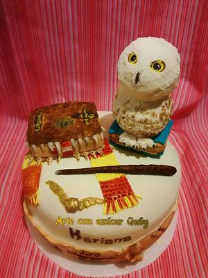 Harry Potter Cake  - Cake by gabyarteconazucar