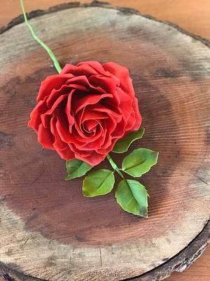 Red Rose  - Cake by Griselda de Pedro