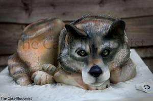 Grey Wolf Cake - Cake by Hannah