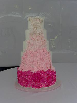 Pink Ombre cake - Cake by liesel