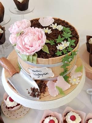 Flower pot cake - Cake by SWEET architect