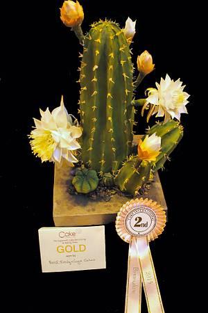A species of Cactus Peruvianus  - Cake by Artym