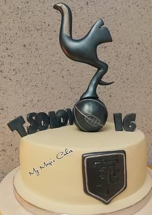 Tottenham hotspur birthday cake  - Cake by My Magic Cakes