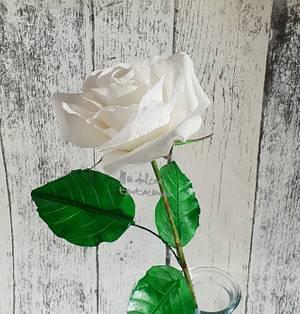 White rose  - Cake by Asya Vencheva