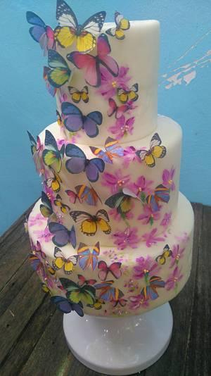 Butterfly Garden  - Cake by Daniel Guiriba