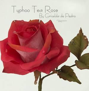 Typhoo Tea Rose  - Cake by Griselda de Pedro
