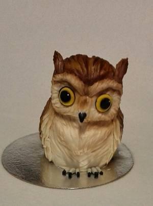 Owl - Cake by Anka