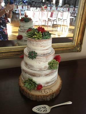 Succulent Naked Cake - Cake by Jazz