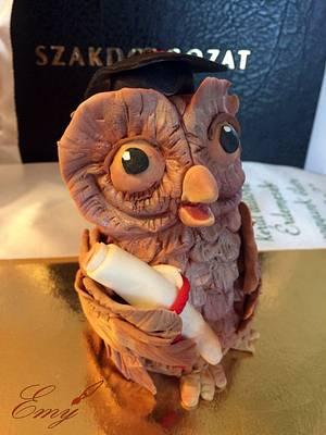 Graduate Owl - Cake by EmyCakeDesign